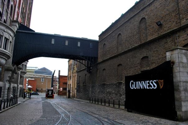 Guinness - Foto: Melissa Becker